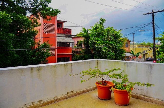 Veľký betónový balkón s dvoma veľkými kvetináčmi so zelenými rastlinami
